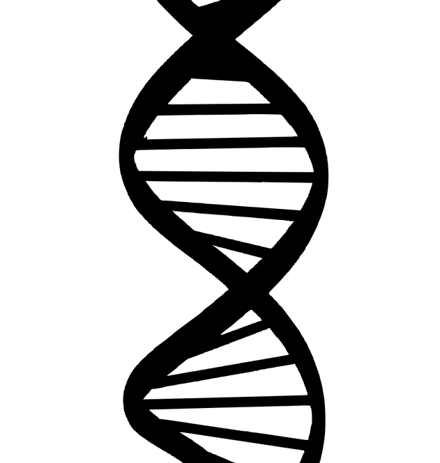 dna-silhouette